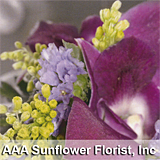 AAA Sunflower Florist